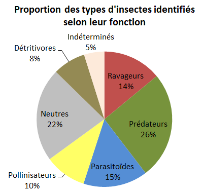 Graphique proportion des types d'insectes