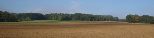 vente de terres dans la Marne