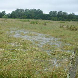 1 16 Millions D 39 Euros D 39 Indemnisation Calamit S Agricoles